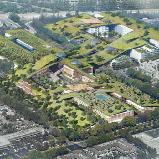 Urban Gardening Teil 2